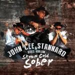 bdb-stonecoldsober-cover